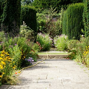 walled garden flower borders still in bloom