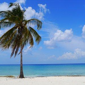 Blick vom Strand zum klaren, türkisfarbenen Meer.