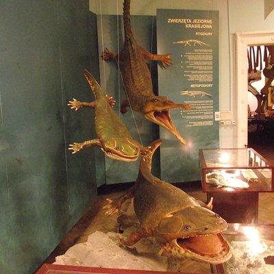 фитозавр и метопозавры