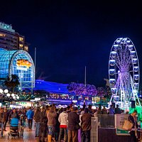 Star of The Show Ferris Wheel