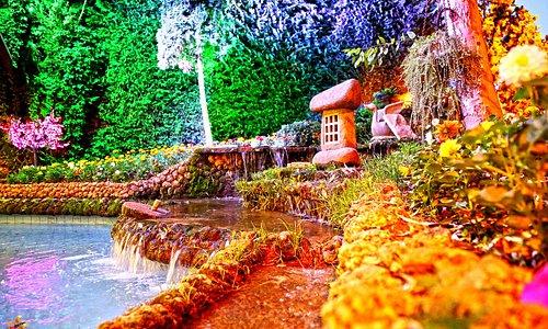 Restaurant Al Shams Garden