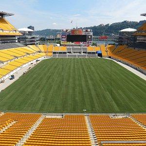 New field!