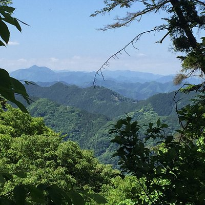 View from the summit of Mt. Takao