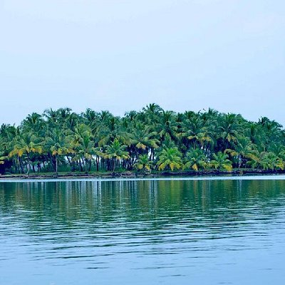 You can either opt for a ferry from the mainland or cross through the Mavila Kadappuram bridge,