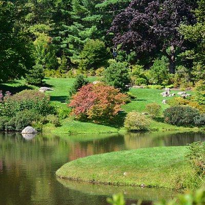 Walking through the Azalea Garden