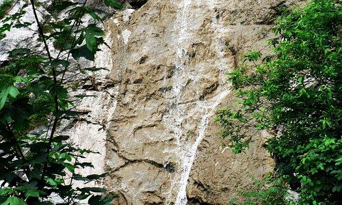 Beim Abstieg von der Hirschalpe nach Bad Hindelang lockt der nahe Hirschbachtobel mit Wasserfäll