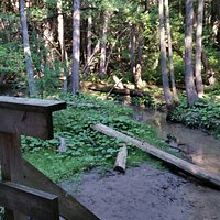 Stephen's Gulch Conservation Area