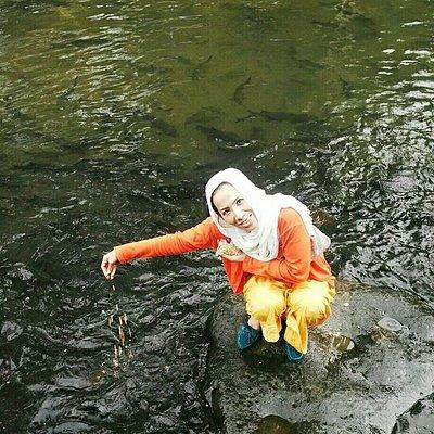 Ikan Larangan Sumatera Barat