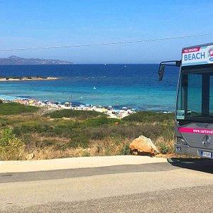 Il San Teodoro Beach Bus