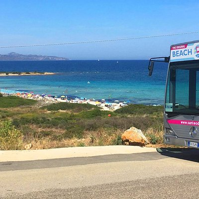 Il San Teodoro Beach Bus