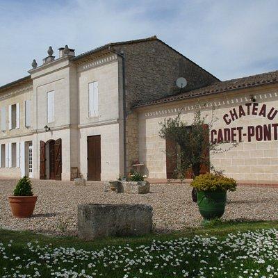 Château Cadet-Pontet, Grands Crus de Saint-Emilion