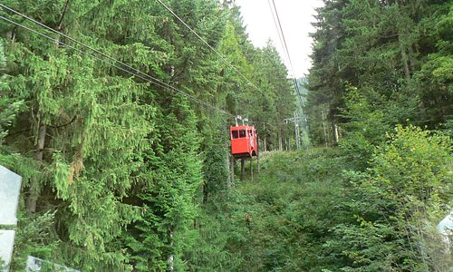 Two little cable cars in tandem.
