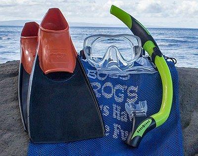 Boss Frog's Snorkel Rental Maui