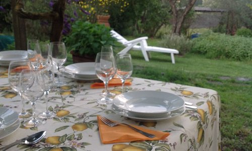 A beautiful garden in the hills where we have our meals