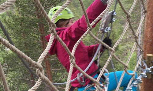 Utfordring i klatreparken