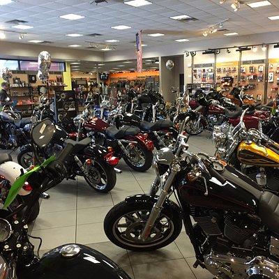Tampa HD showroom