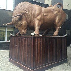 Атакующий бык
