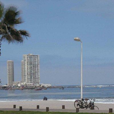 Me encanta caminar a la orilla del mar y con aire puro !