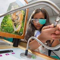 Animal perception with Cambridge Science Centre