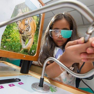 Animal perception with Cambridge Science Centre