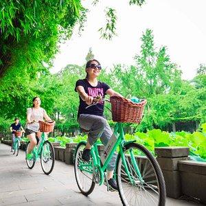 Best of Chengdu Bike Tours