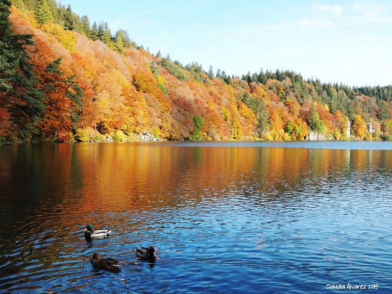 Hay magia en ese lugar. Y los colores del otoño conspiran a favor.