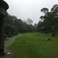 A quiet garden area
