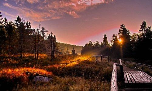 Parc National Harz (photo par Christian Wiesel)