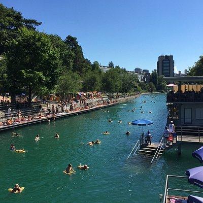 Limmatschwimmen 2016 - normalerweise sind weniger Leute im Wasser.
