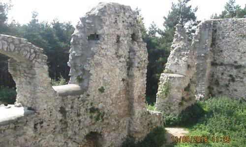 widok od środka ruin