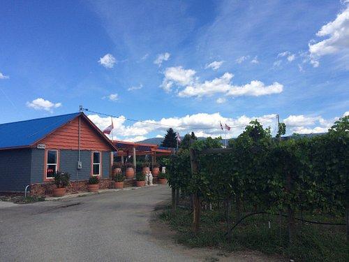 Back Door Winery
