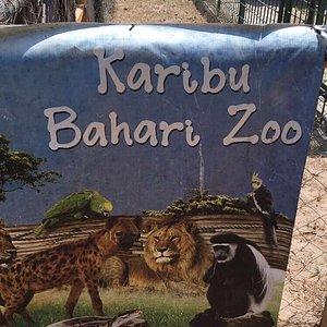 Bahari Zoo
