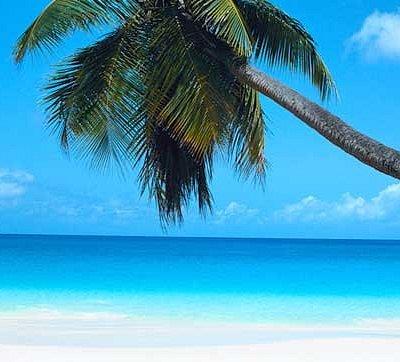 Tropicalboat Luxury Yacht Charters & Rentals