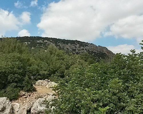 Nice views