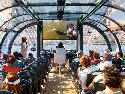 Inmersión seguida en directo por los pasajeros a bordo © Europarques-EBI