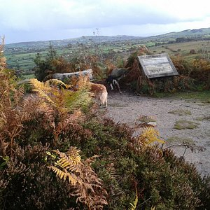 Nercwys Forest in the Clwydian Range and Dee Valley AONB views to Cheshire and Moel Famau