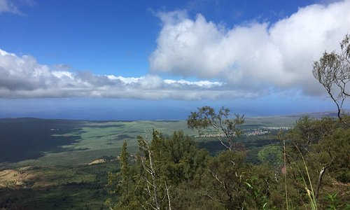 From Mount Lana`ihale looking toward Lana`i City