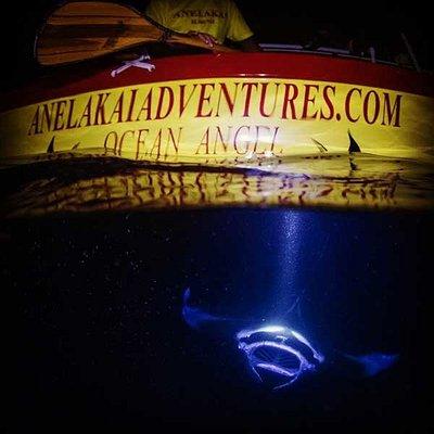 Manta Ray night snorkel in Kailua Kona, HI