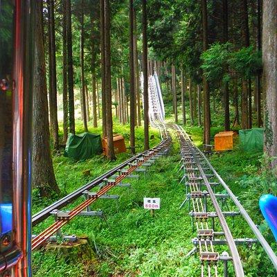 Okuiya Sightseeing Tour Monorail