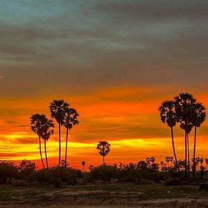 Sunset @ countryside