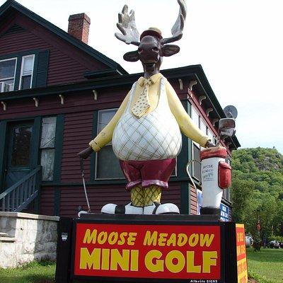 Moose Meadow Mini Golf