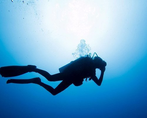 Diver silhouetted against the sun