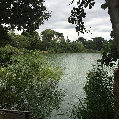 Красивое озеро, можно гулять вокруг по дорожке есть лавочки и небольшие причалы. За дополнительн