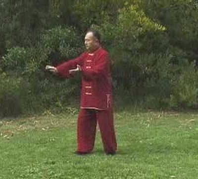Sifu Zhang Xue-Xin