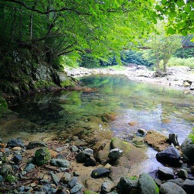 巨岩吊り橋と木の俣川
