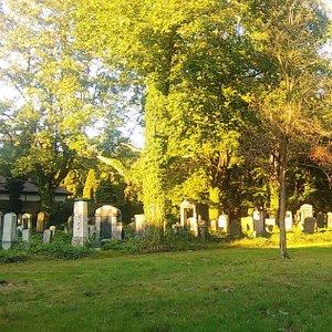Jewish Graveyard, Gliwice