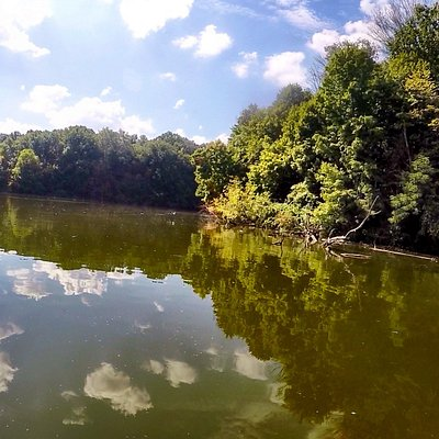 View from a SUP of the far side of the Eagle Creek Reservoir.