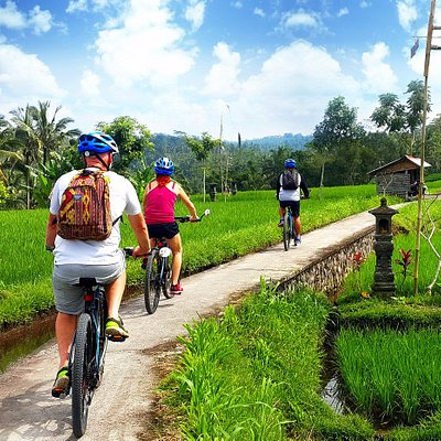 Ubud Electric Bicycle Tours