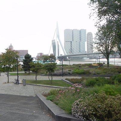 View from memorial to Eramus bridge