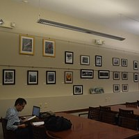 The library has monthly art exhibitions in the main reading room.
